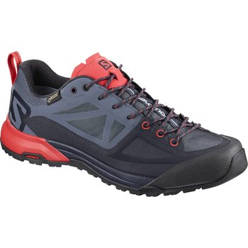 Salomon X Alp SPRY GTX W, Gy/Crown Blue/P, EUR 39 1/3 (UK 6.0)