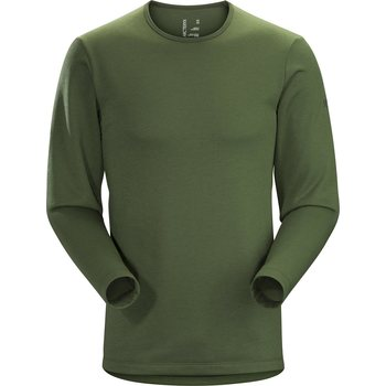 Arc'teryx Dallen Fleece Pullover Mens, Larix, L