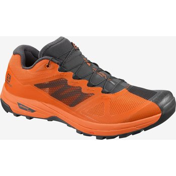 Salomon X Alpine Pro, Phantom / Russet Orange / Russet Orange, EUR 40 2/3 (UK 7.0)