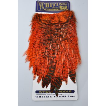 Whiting American Rooster Hackle Kukon Satula, Grizzly / Orange