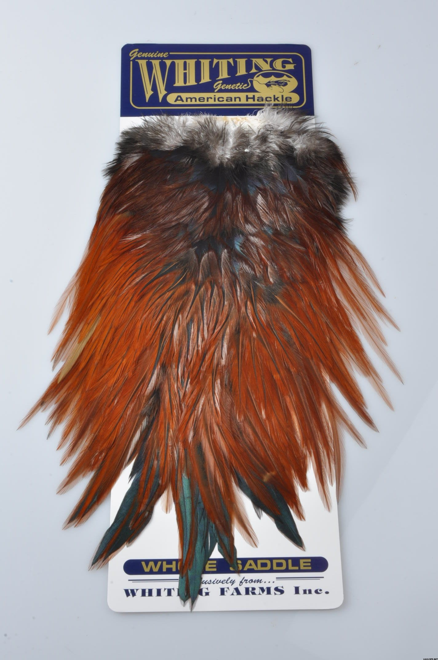 American rooster saddle grizzly dyed hackle fly tying supplies fly tying feather