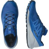 Salomon Sense Ride 4 Mens