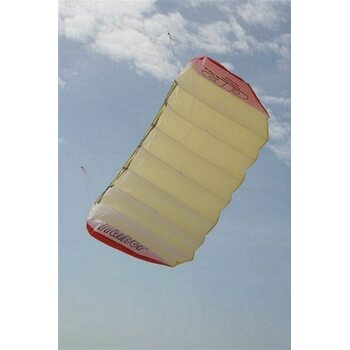 DP Kites Trainer RTF with Bar 2.0m²