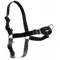 PetSafe Premier Easy Walk Harness -vedonestovaljas, Musta, XS (30-40 cm)