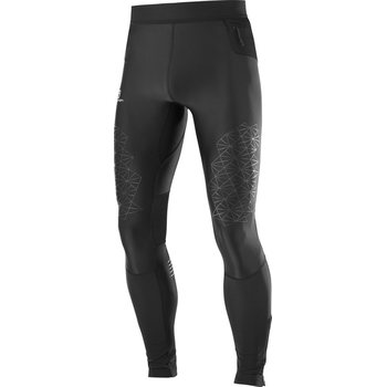 Salomon Fast Wing Long Tight M (2018)