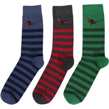 Barbour Pheasant Stripe Sock Gift Box