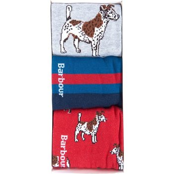 Barbour Dog Stripe Sock Gift Box